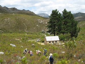 Photo of the descent to the Paarl/Wellington Section's Krom River Hut